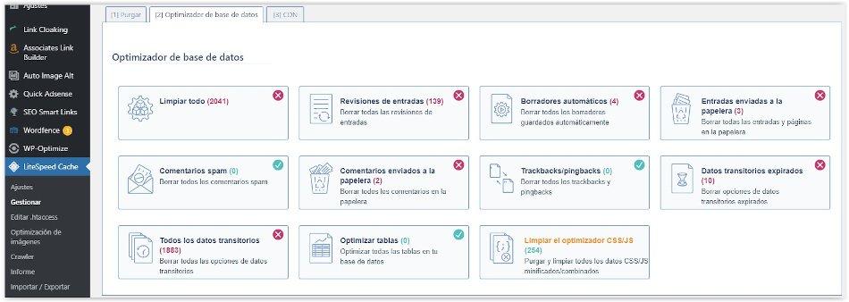 Optimizar la base de datos de WordPress con LiteSpeed Cache