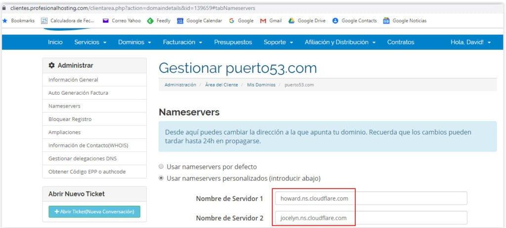 Configuracion de los DNSs de Cloudflare en Profesional Hosting