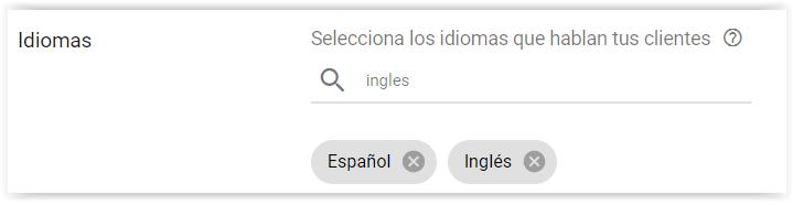 Google Adwords - Seleccionar idioma