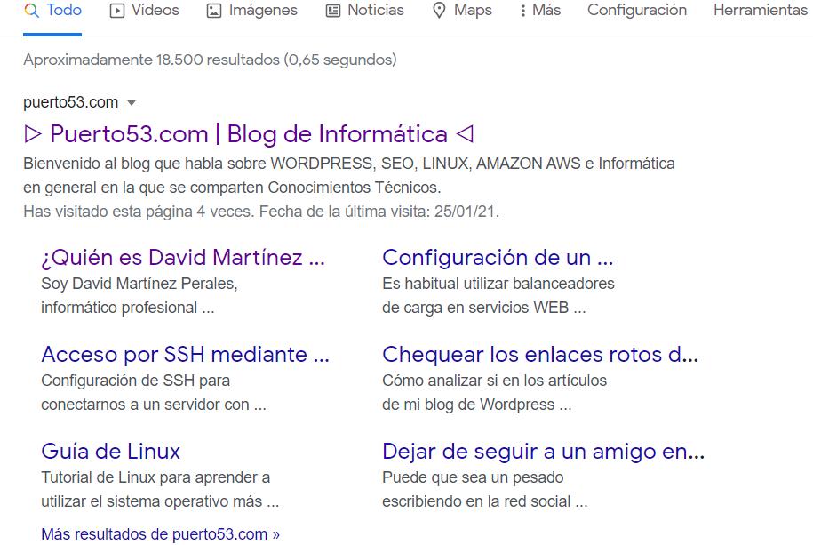 Texto enriquecido de puerto53.com con Schema PRO